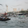 Crazy birds. On dhow from Deira to Bur Dubai