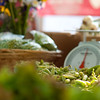 Suwanee farmers market with the new 85mm f1.4, can you say bokeh?