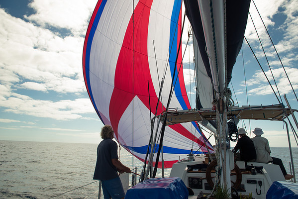Stu - Big Mama Sailing, Great Barrier Reef