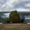Museum of the History of Polish Jews, Warsaw