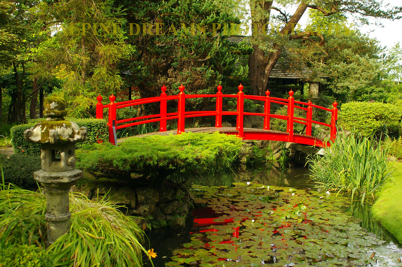 RED BRIDGE OVER STREAM
