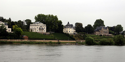 Nice homes along the Rhine - many with their own vineyards
