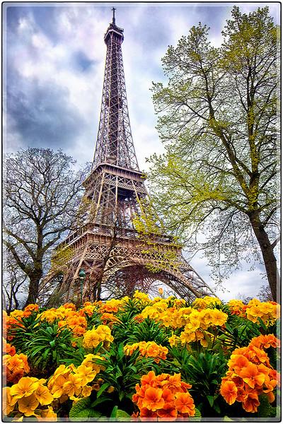 It's Spring in Paris!