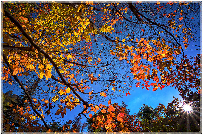 Autumn in Madrid, Spain