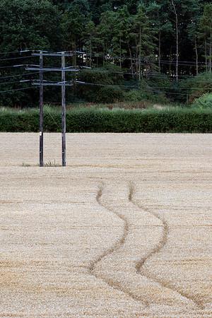 Tracks to the pole.