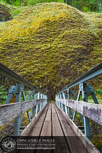 4.5 Mile Bridge Eagle Creek Trail Oregon