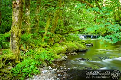 Eagle Creek Near 7.5 MIle Camp
