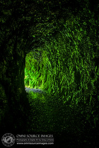 Eagle Creek Trail Tunnel at Tunnel Falls, Oregon (HDR)