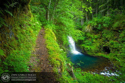 Eagle Creek Trail at Sevenmile Falls, Oregon