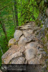 Eagle Creek Trail Near Tunnel Falls