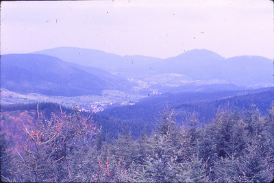 Scenes of Black Forest