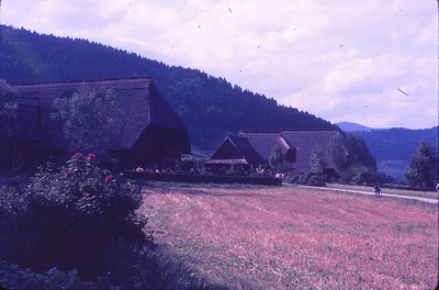 Gutach Valley (like Pennsylvania Dutch)
