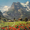 Grindelwald--Eiger Mountain