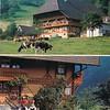 Gutach Valley, where we stayed one night
