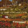 Gardens in Mainau, Bodensee