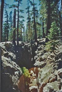 9/7/02 Earthquake Fault, off Hwy. 203, Mammoth Region, Eastern Sierras, Mono County, CA