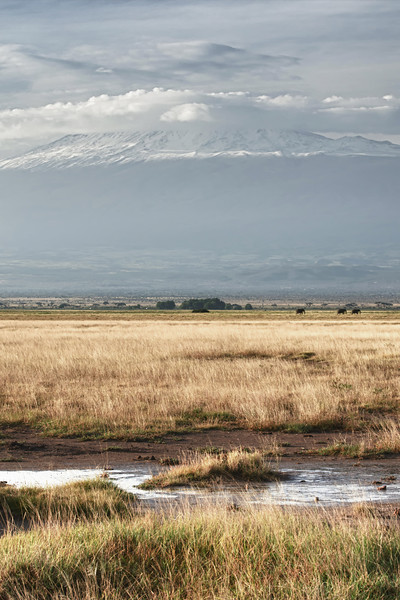 Mt. Kilimanjaro from Amboseli NP, Kenya