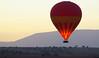 Balloon at sunrise, Masai Mara