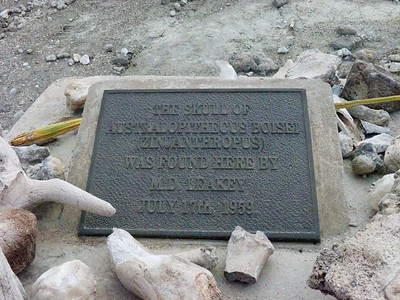 Plaque at Oldupai to mark Mary Leakey's 1959 discovery.