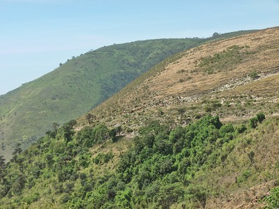 The green hills of Africa above the crater floor.