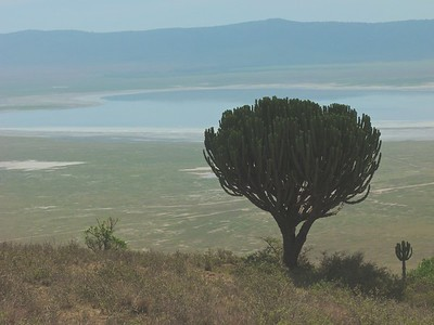 Early view into Ngorongoro Crater.