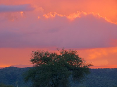 The amazing colors of a sunset on the Serengeti.