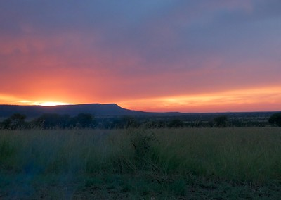 The sunsets at camp in the Serengeti were beautiful with vivid colors.
