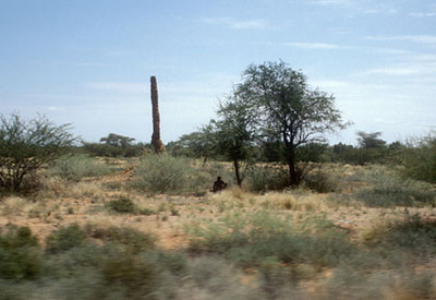 eastafrica9