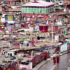 Nuns walking through the main street of the Yarchengar Tibetan Buddhist Nunnery in Sichuan, China.
