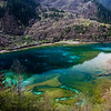 Five-Flower Lake at Jiuzhaigou National Park in Sichuan, China.