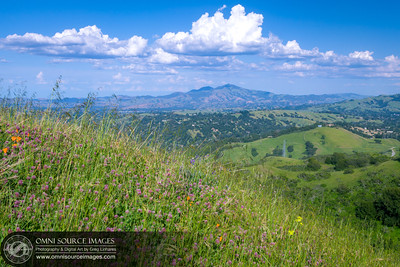 Spring Hiking at Sibley Volcanic Regional Preserve with Mt. Diablo in the Distance