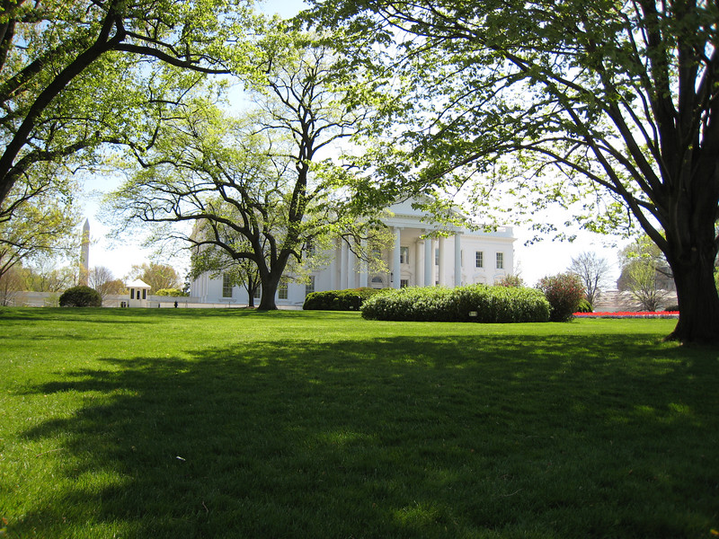 Dubya sleeps under these trees.