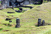 In the Quarry. These moai are full size but are buried. Note half-finished moai lying prone at top of picture.