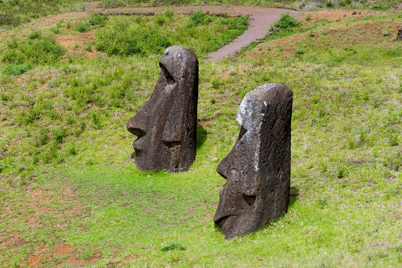 In the Quarry. These moai are full size but are buried.