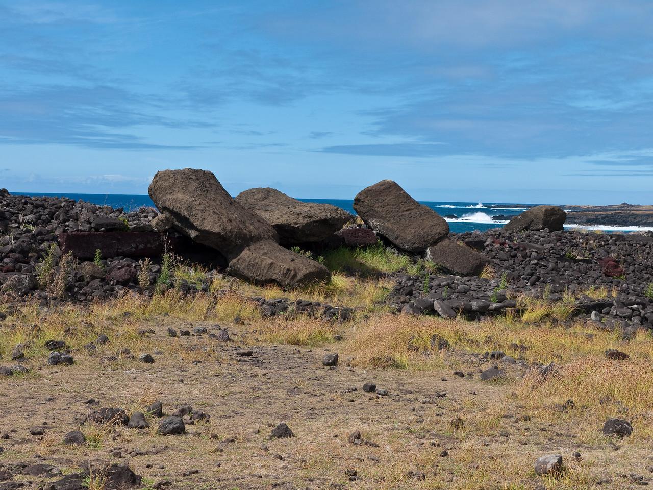 Toppled moai at Ahu Hanga Te'e