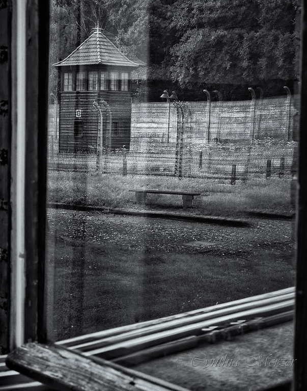 Reflections on Auschwitz