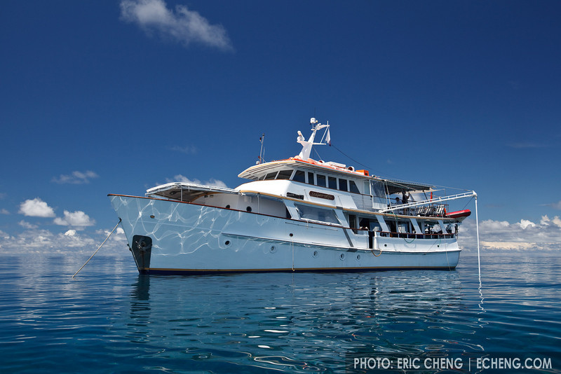 The M/V Golden Dawn in the Eastern Fields, Papua New Guinea
