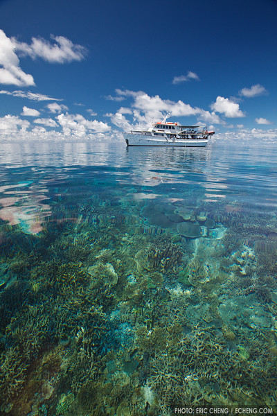 The M/V Golden Dawn at a shallow reef in the Eastern Fields, Papua New Guinea