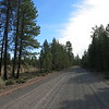 The first 40 miles were gravel, through a mix of pine forests and dry grassy meadows. I saw 5 vehicles in 5 hours.