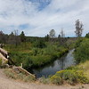 I think this is the Sycan River. It was cool and refreshing. The OC&E Trail ends near here, a full 90 miles from Klamath Falls; I might have to get bigger tires and come back and ride it.