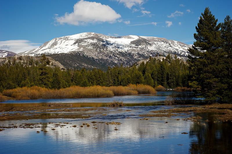 Yosemite Spring river
