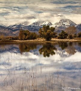 Pond in Owens Valley near Bishop, CA.  Overlooking Sierra Nevadas