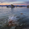 Late afternoon at Mono Lake
