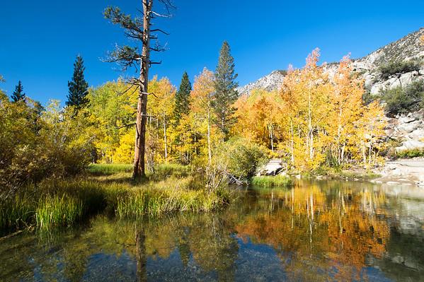 Eastern Sierras 2011