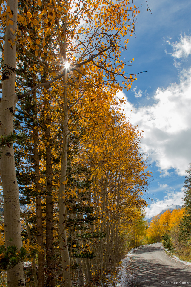 North Lake Road Aspen