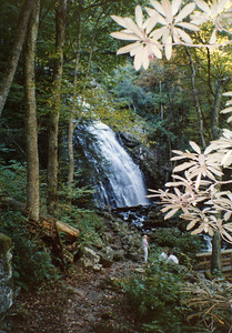 Crabtree Falls - Blue Ridge Parkway