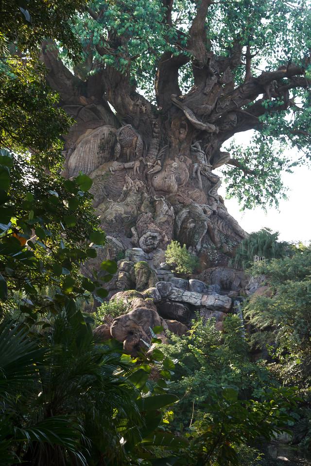 Disney World-39_October 08, 2013
