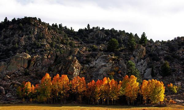 2009 eastern sierras in the fall