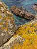 Lizard Point_Cornwall_71208-289_photo_Ted_Davis_30-430-2639