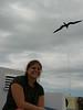 Huge frigate birds glide overhead.